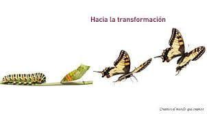 Reflexiones - Transformación