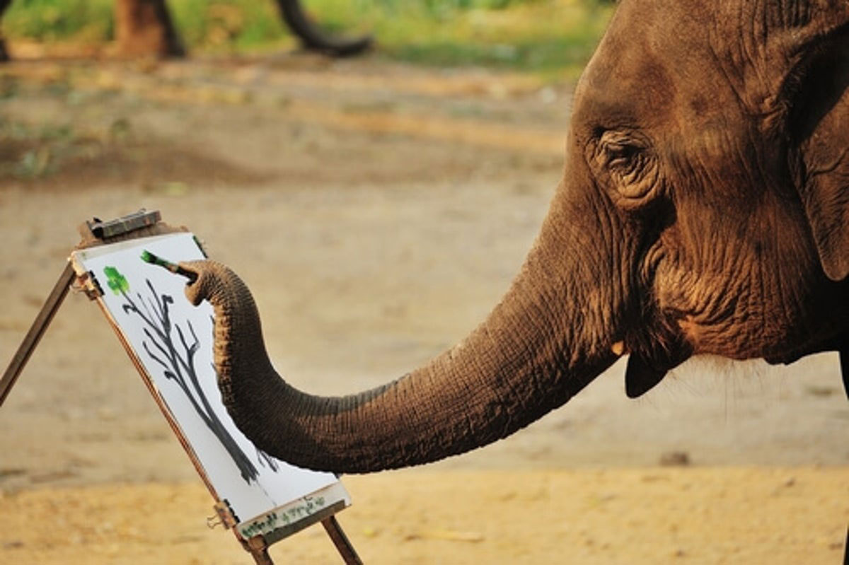 Reflexiones - No hay nada imposible!